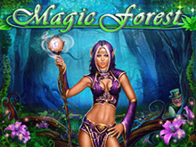 Magic Forest с крупными ставками от Playson