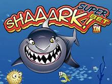 Shaaark Superbet от Microgaming в виртуальном заведении азарта