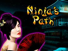 Ninja's Path от производителя Novomatic, игра с азартным уклоном
