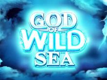 Игровой автомат God Of Wild Sea